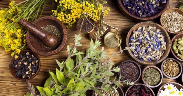 Травы как народный метод лечения