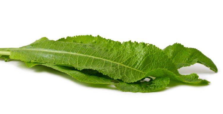 В рамках лечения можно сделать аппликации из листьев хрена
