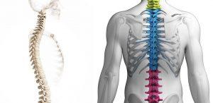 Лечить остеохондроз позвоночника можно при помощи таблеток