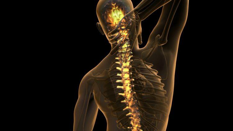 Остеохондроз позвоночника - заболевание, которое встречается очень часто