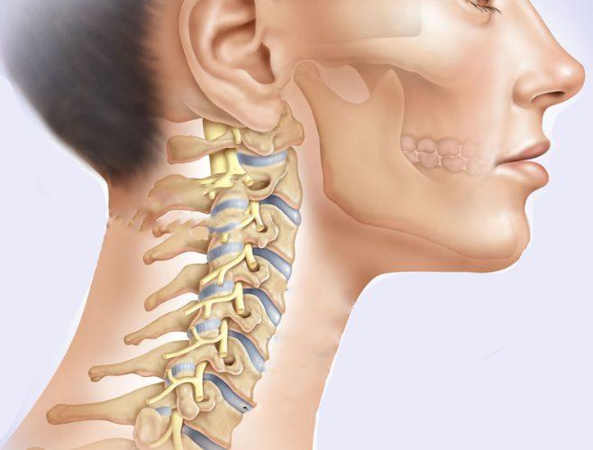 На сегодняшний день существуют препараты, благодаря которым можно улучшить кровообращение при шейном остеохондрозе