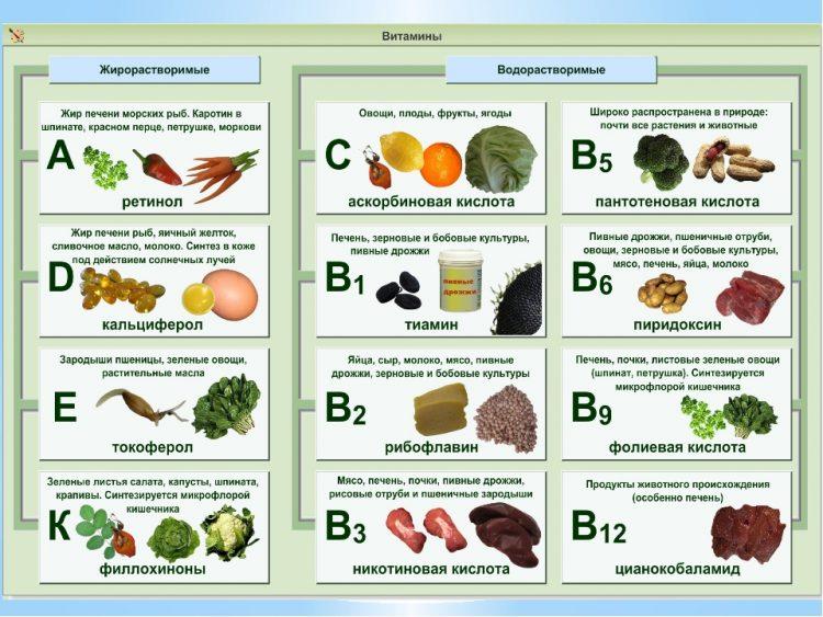 Какие витамины можно найти в продуктах питания