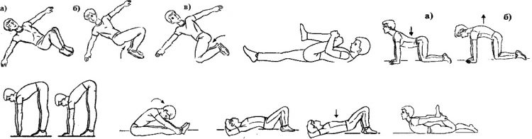 Варианты упражнений для поясничного отдела позвоночника