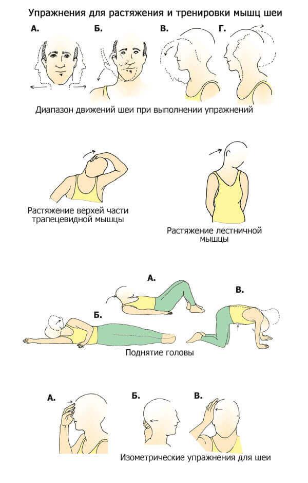 Эффективные упражнения при остеохондрозе