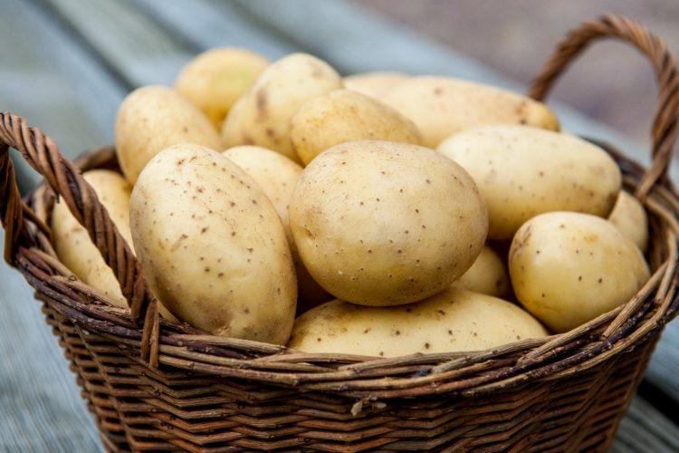 Сок картофеля поможет снять болевой синдром