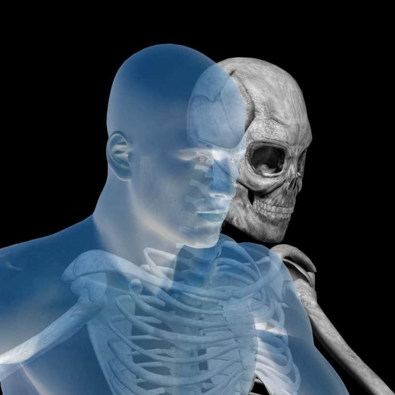 Врачи рассказали, какие продукты делают кости крепкими