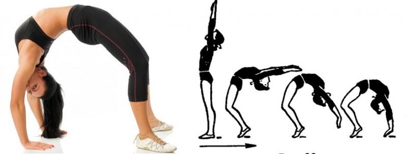 Как встать на мостик из положения стоя и лежа, подготовительные упражнения