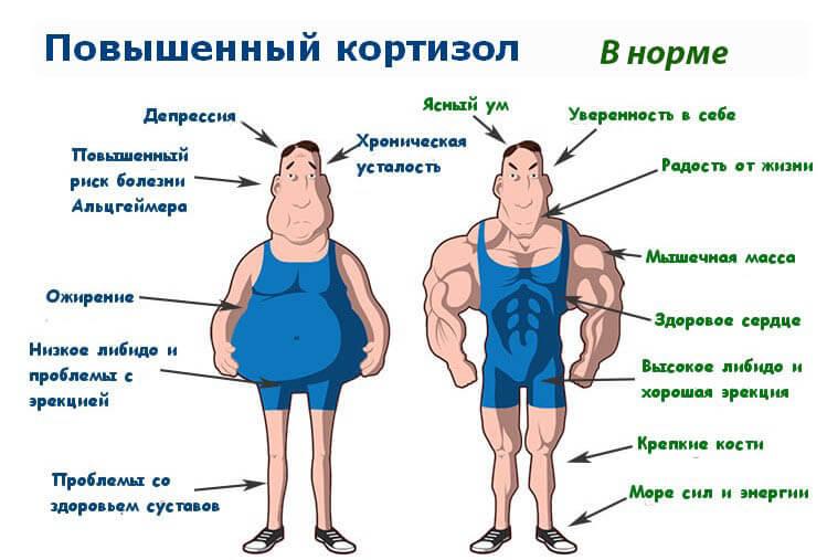 Как ускорить похудение если вес встал