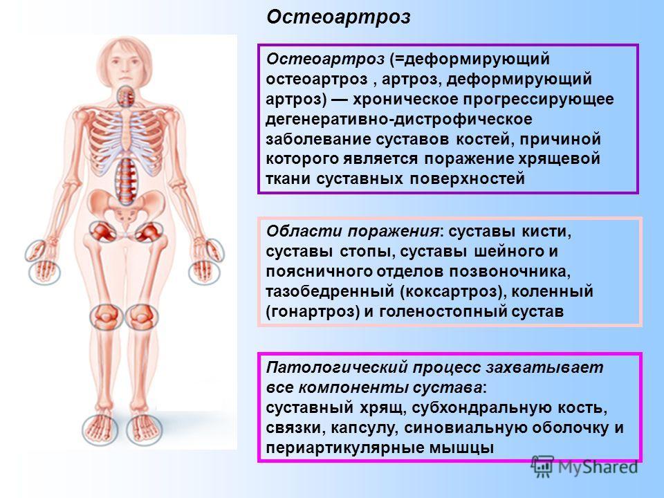 Лечение остеопороза по зож